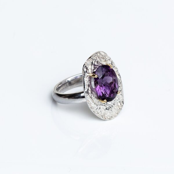 Silver Cholla Wood Ring with faceted Amethyst, 18ct gold claws